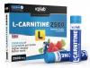 Жидкий л-карнитин L-Carnitine 2500 фирмы VP Laboratory
